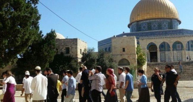 بحماية شرطة الاحتلال.. 140 مستوطنا وعنصر مخابرات يقتحمون الأقصى
