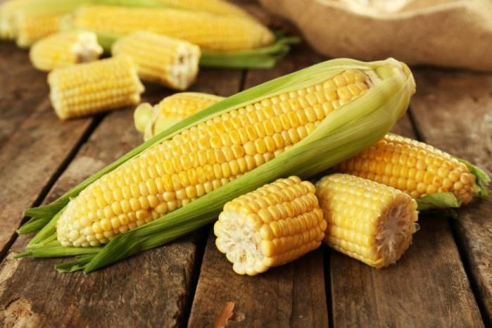 لماذا لا يستطيع البشر هضم الذرة؟