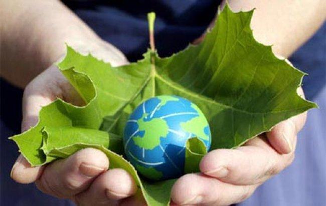 """الإحصاء عشية """"يوم البيئة"""": قطاع الطاقة هو أكبر مولد للمنبعثات في فلسطين"""