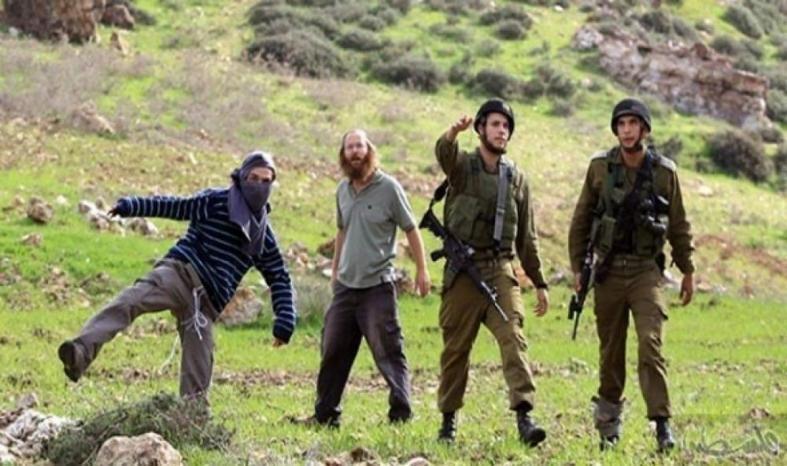 مستوطنون يعتدون على المواطنين بحماية جيش الاحتلال في الخليل