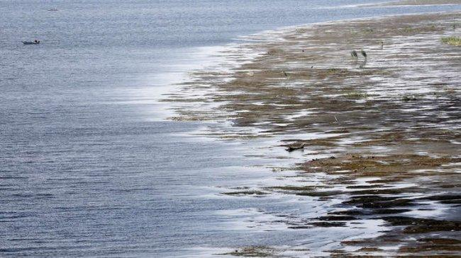 """مصر تدق ناقوس الخطر بسبب """"قضية مياه النيل"""""""
