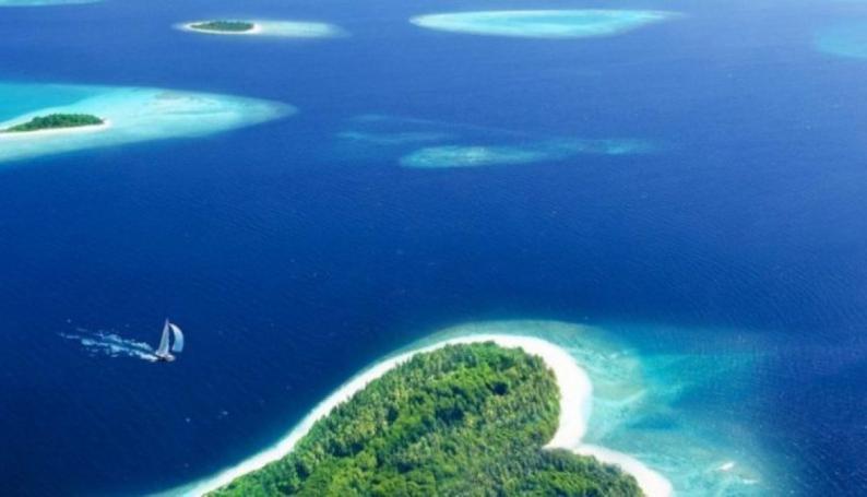 المحيطات تسجل أعلى درجة حرارة في 2019