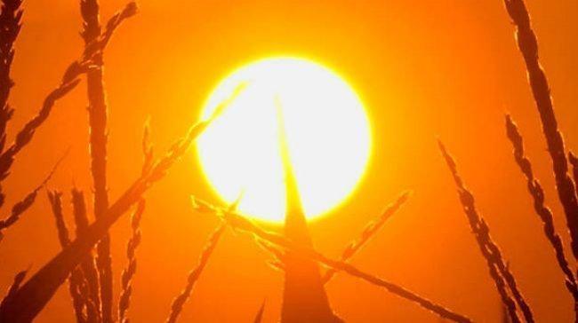 الاثنين: الحرارة أعلى من معدلها بـ 8 درجات