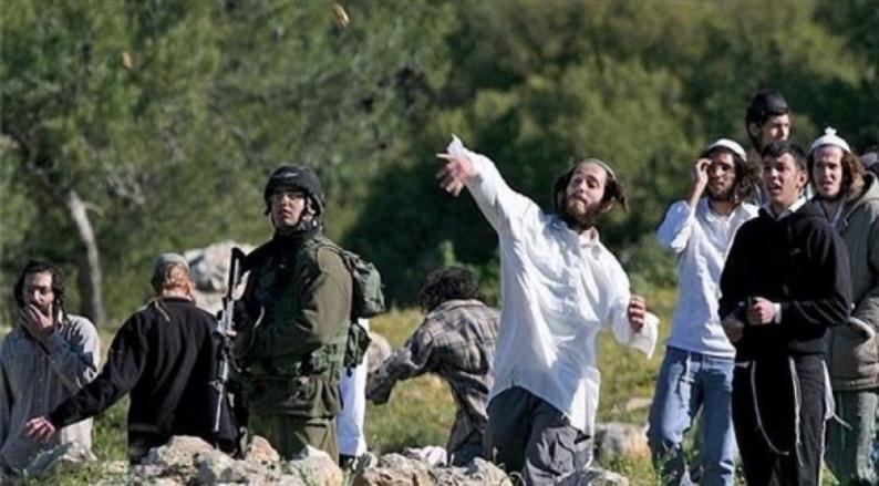 مستوطنون يهاجمون مركبات المواطنين بالحجارة شمال نابلس