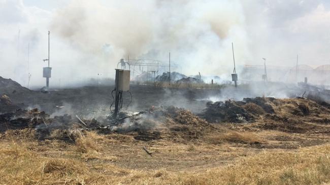 الطائرات الورقية الحارقة لا تزال تؤرق الاحتلال