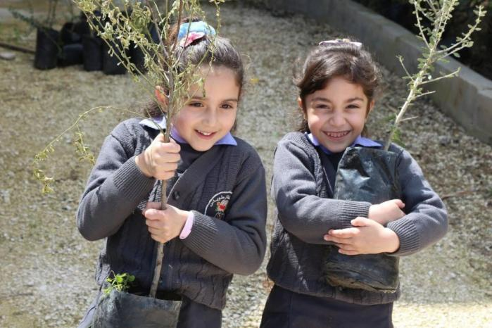 """""""التعليم البيئي"""" يدعو لتكثيف غرس الأشجار الأصيلة"""