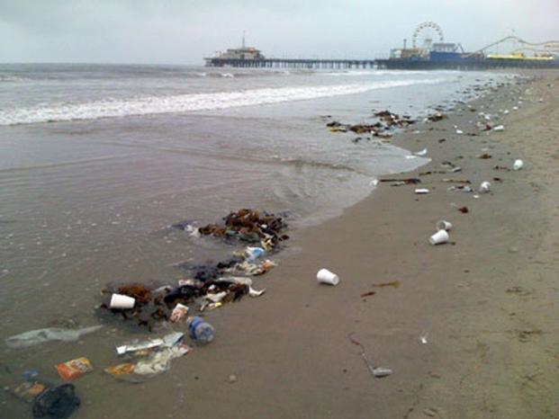 الخبراء يحذرون من دخول مادة البلاستيك في السلسلة الغذائية