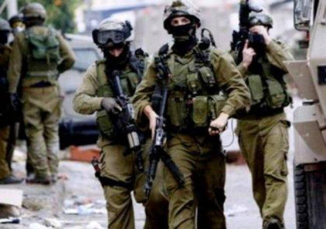 الاحتلال يقتحم جبل الموالح في بيت لحم