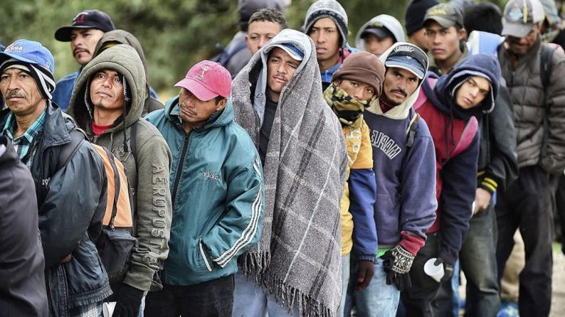 272 مليون مهاجر في أنحاء العالم