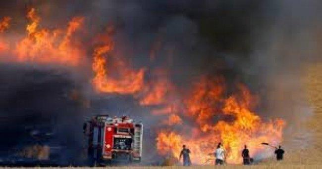 8 حرائق في مستوطنات غلاف غزة بفعل بالونات حارقة