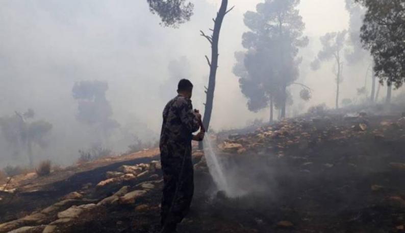 الإغاثة الزراعية تناشد المواطنين والجهات الحكومية بضرورة اتخاذ كافة الاحتياطات اللازمة لمكافحة الحرائق