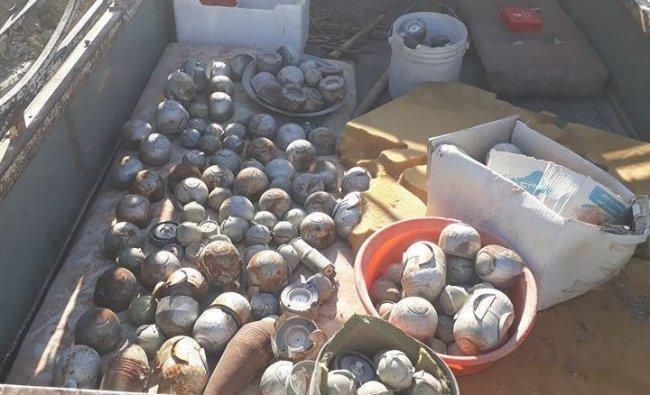 إزالة عشرات القنابل العنقودية في مخيم حندرات في حلب