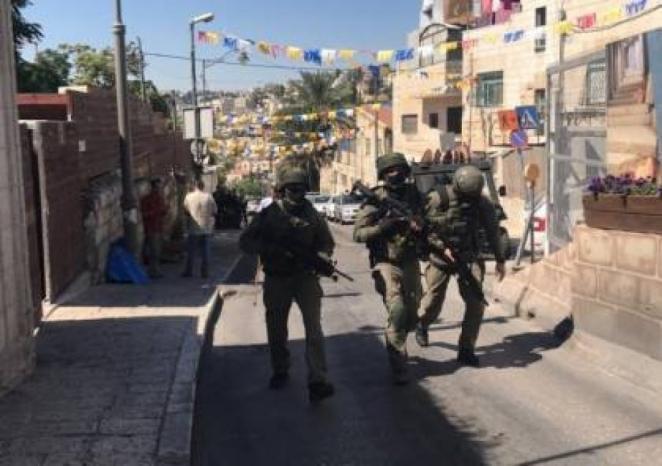 الاحتلال يعتقل المواطنة أمل بني منية من عقربا جنوب نابلس