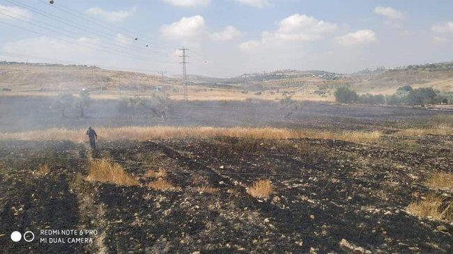 حريق يطال 120 دونم من المحاصيل الزراعية شرق قلقيلية