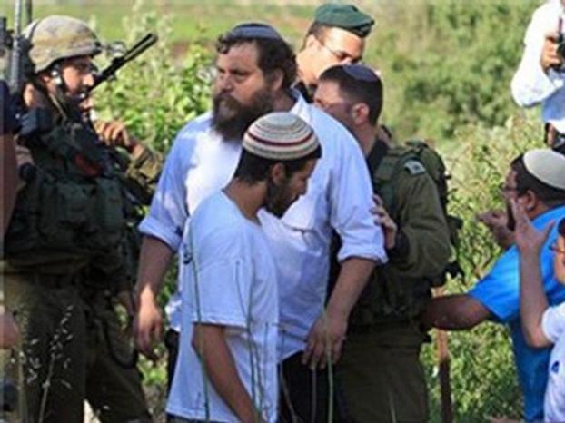 الخليل: مستوطنون يهاجمون مزارعين ويقطعون أشجار في بلدة بيت أمر