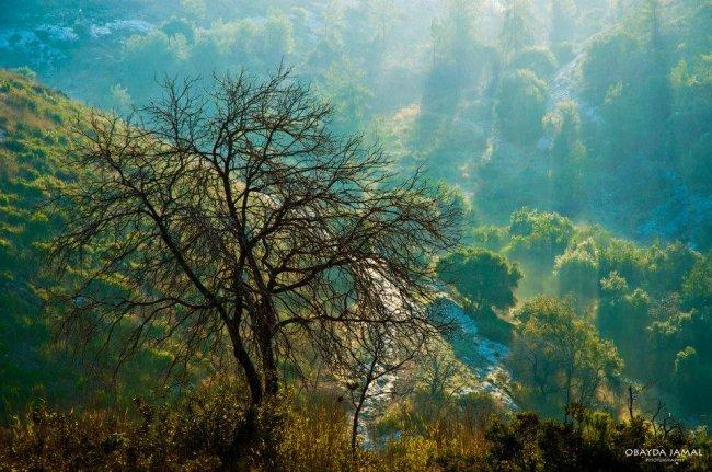 """حيث الطبيعة لا تنصفها الصور...""""عبيدة جمال"""" ورحلاتٌ في الأرض مع رفاق السفر"""