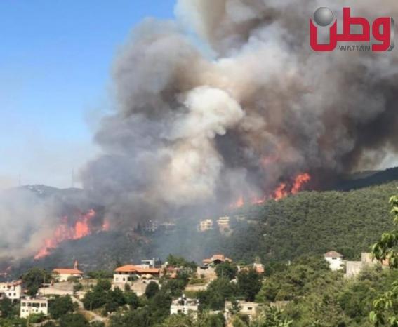 حريق ضخم في غابات عكار بلبنان
